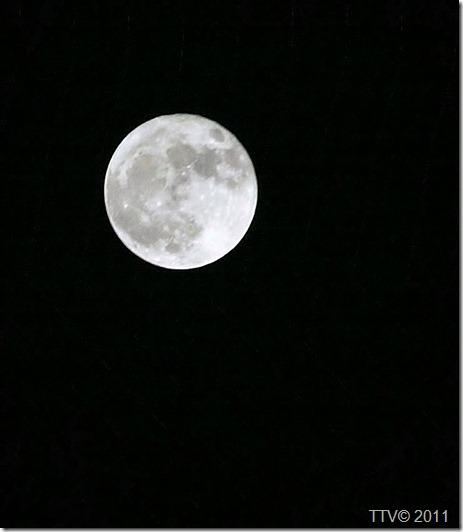 kuu 009