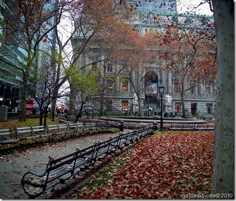 New York Autumn Photography