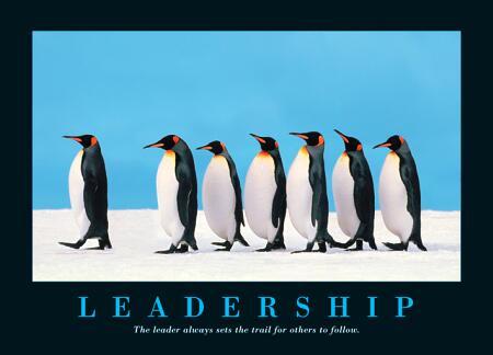leadership_penguines.jpg