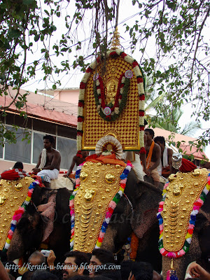 Elephant carrying Goddess Bhagavati during Thalapoli pooram festival in Thiruvilwamala