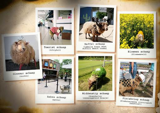 De afgelopen week zijn op verschillende locaties in het land vermomde schapen opgedoken.