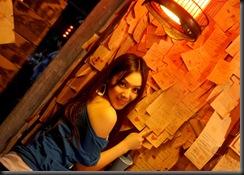 Zhu Songhua (26)