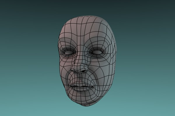 A face with wireframe