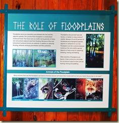 floodplains poster