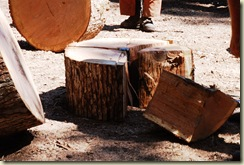down oak 03