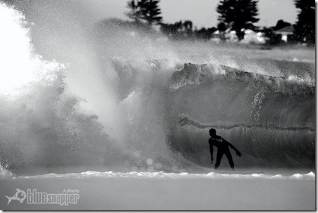 Tim Tappin, Northern Beachs. Foto: Alex Marks