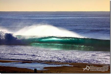 Northern Beachs. Foto: Alex Marks