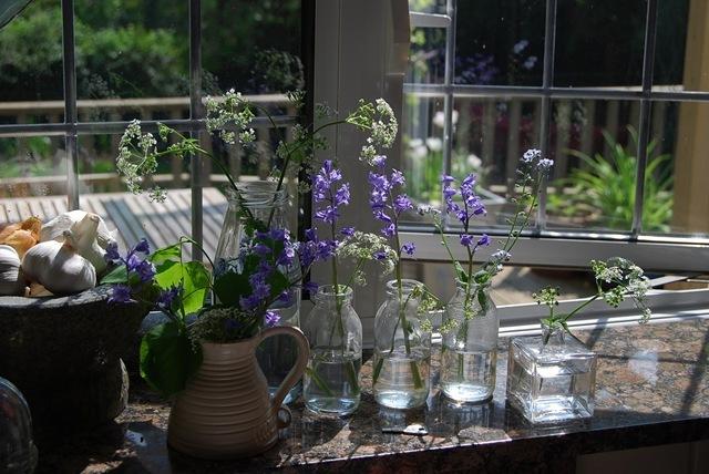 On my windowsill (2)