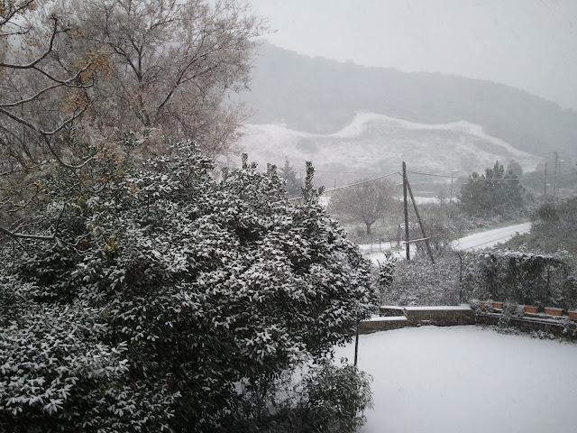 neve sui colli laziali