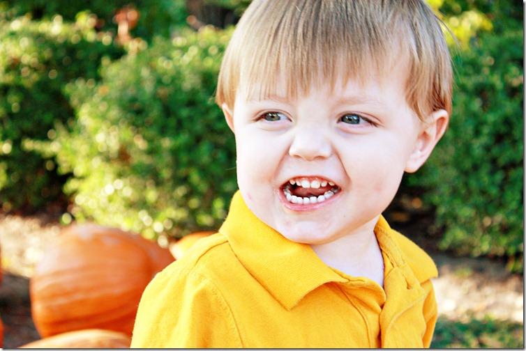 PumpkinPatch 061