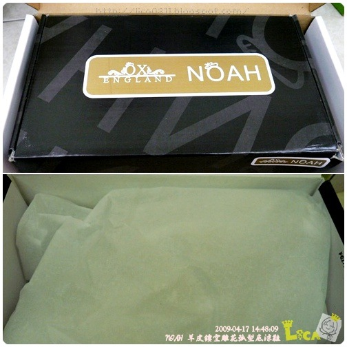 NOAH-01A