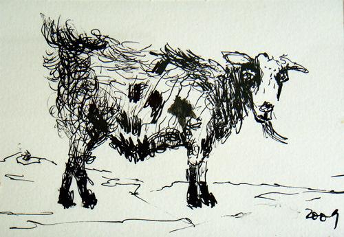 Goat Nr14