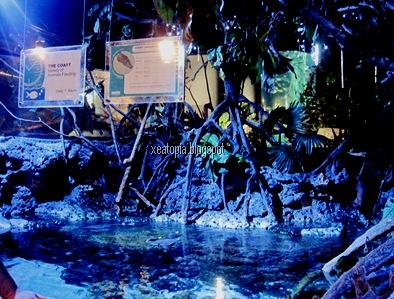 aquaria 107