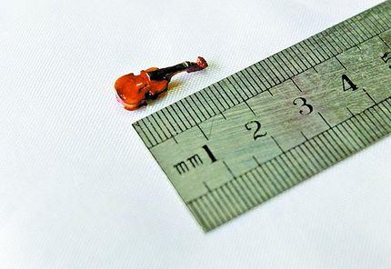 World%27s%20smallest%20violin.JPG