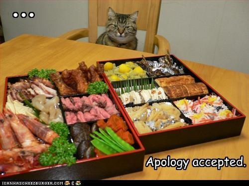 you are forgiven  lolcat