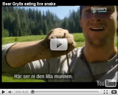 bear grylls eating live snake.jpg