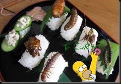 Sushi de Inseto 04