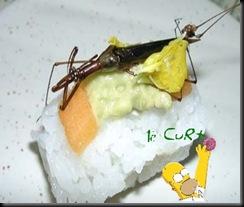 Sushi de Inseto 08