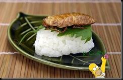 Sushi de Inseto 15