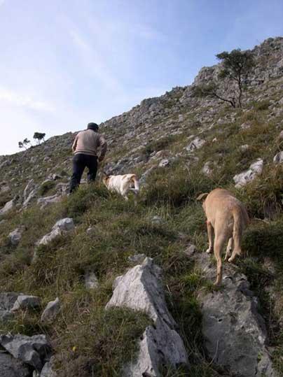 Álvaro Fernández con sus perros