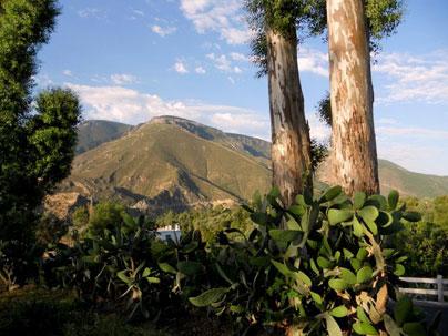 Mina Lújar: socavón San Luis