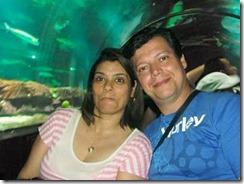 Hermes e Tania no aquario