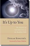 It's Ups to You: The Practice of Self-Reflection on the Buddhist Path