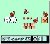 Perfil Mario 06