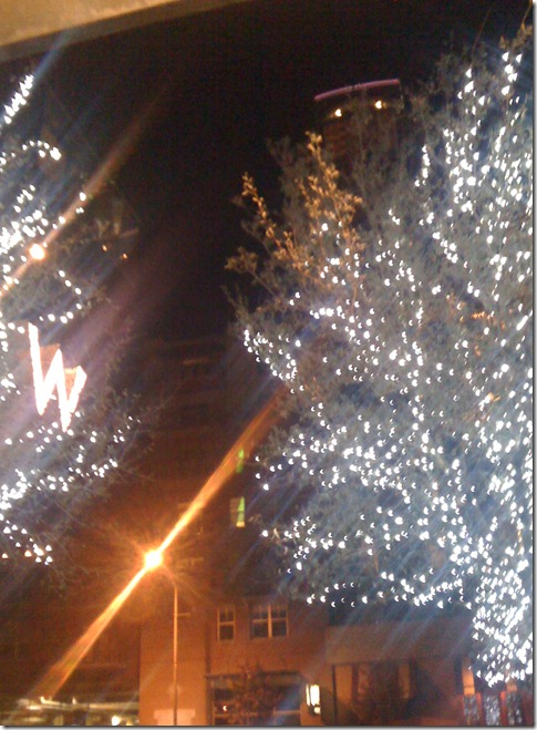 w austin outside tree lights