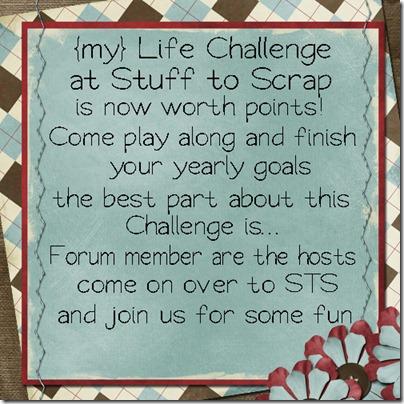 my life challenge flyer_web