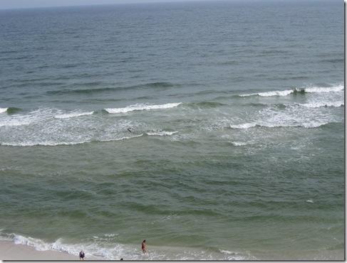 gulf shores may 2010 013