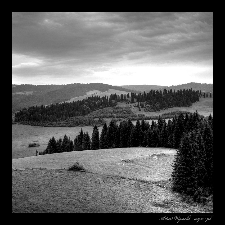Artur Wysocki fotografie