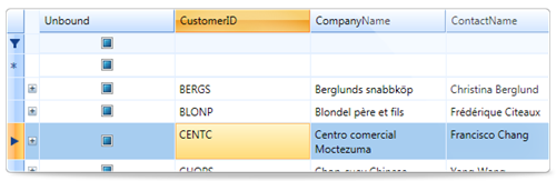 Wpf controls wpf grid from componentone for Wpf datagrid control template