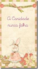 lacaridadnuncadejadeser_portugues