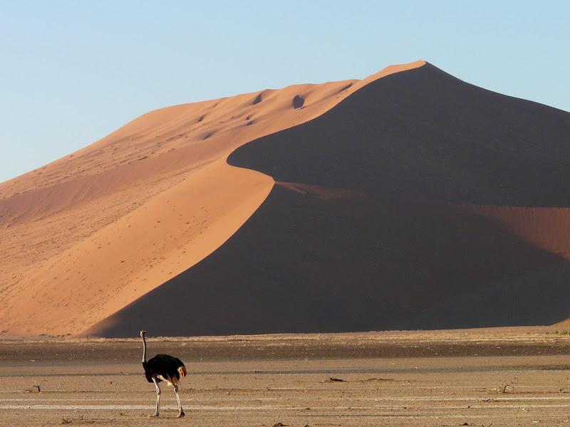 Namibia, Blog ¿Dónde está Yola?, Entrevista ¿Dónde está Yola?,¿Dónde está Yola?, vuelta al mundo, round the world, información viajes, consejos, fotos, guía, diario, excursiones