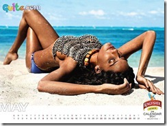 Kingfisher Calendar 2011_5
