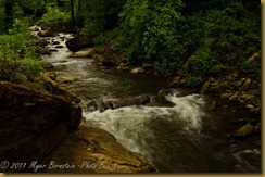 Running water Gorge_D074659West Virginia  NIKON D7000 May 06, 2011