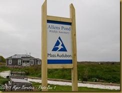 Allens Pond