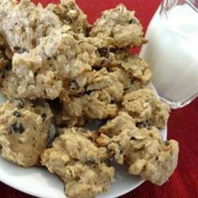 Low Calorie Oatmeal Raisin Cookie