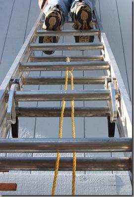 ladder 023