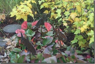 fall scenes 026