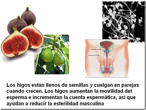 frutas 08