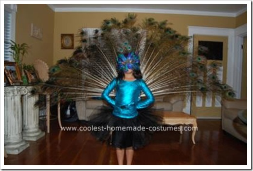 coolest-homemade-peacock-bird-costume-14-21154293