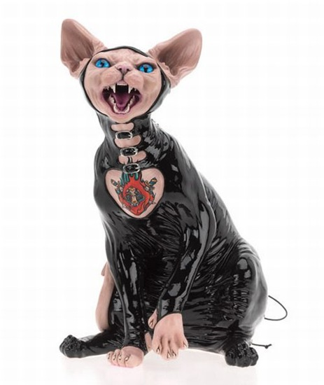 gato pervertido (2)