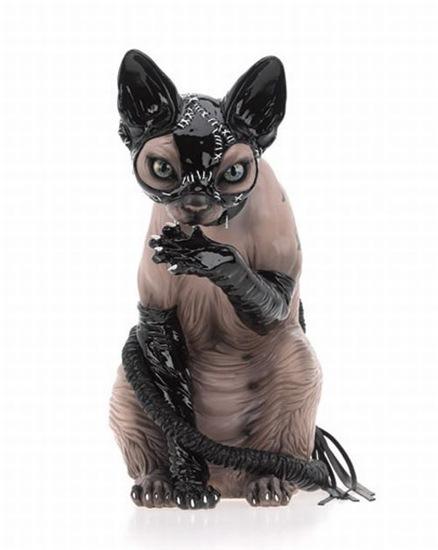 gato pervertido (5)