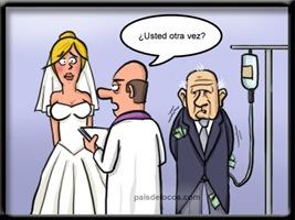 humor elgallinero (2)