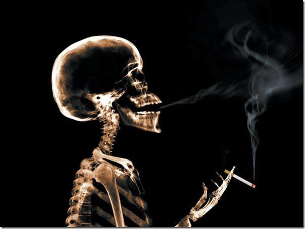 sin tabaco migallinero.blogspot (4)
