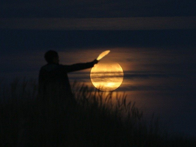 luna - mi gallinero (3)