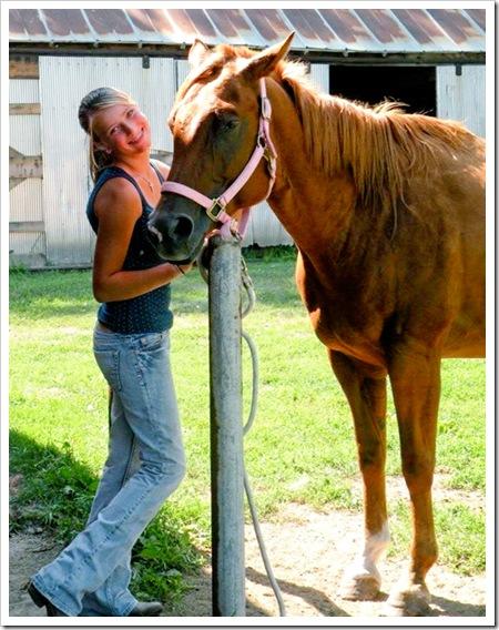horse becca