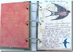 aawa barn swallow page